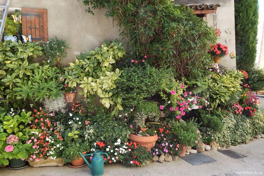Mirabel aux Baronnies ( 4 ) la maison fleurie