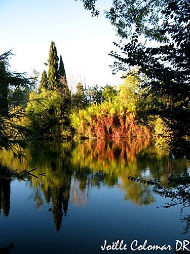 paysage-rouge-2-copie.jpg