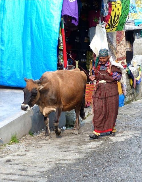 scène de vie courante en Inde