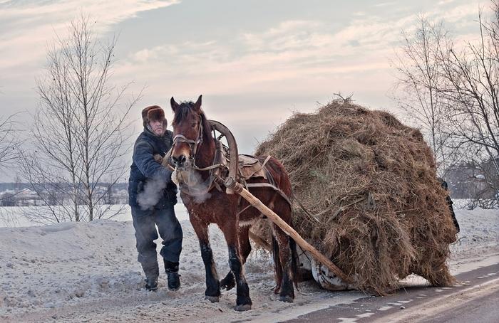 Des photos sublimes de différents photographes de fédération de russie(Photos Authors The Best More PHOTO AWARDS 2019