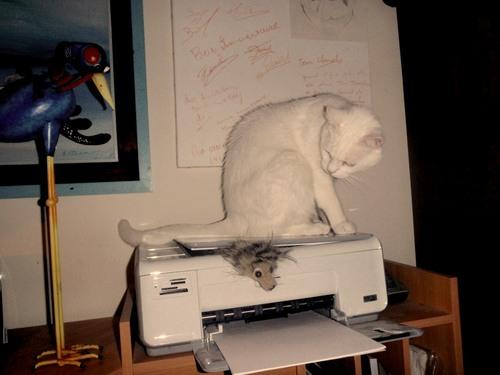 ON ARRÊTE PAS LE PROGRÈS ...ou l'avènement de l'imprimante 3 D