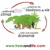 Trees_Life-forestcycleFR_m.jpg