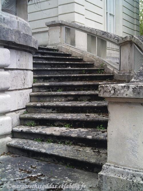 Escaliers en voie d'abandon - Stairs almost forsaken