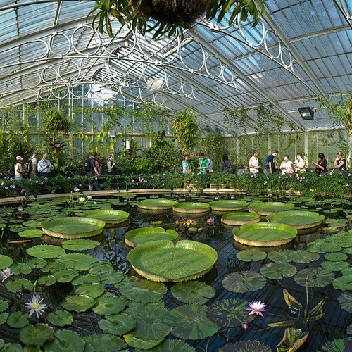 Tour d' Europe botanique,