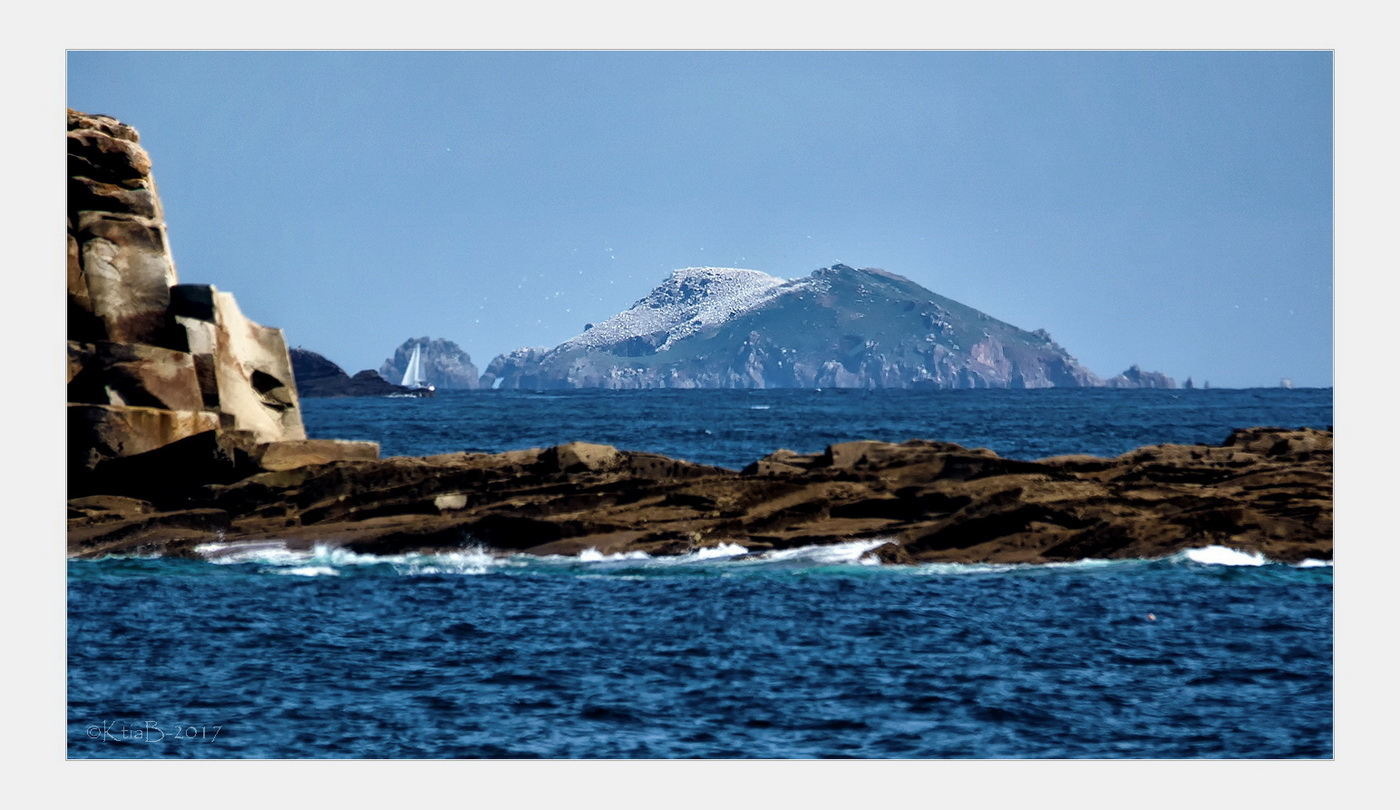 Île de Rouzic