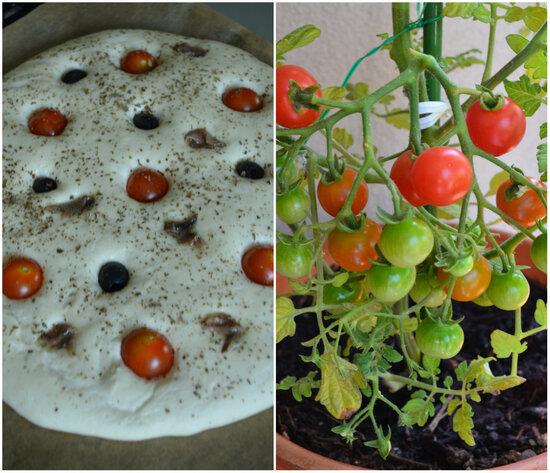 Focaccia {Anchois,Basilic,Olives & Tomates Cerises}