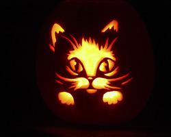 "Rappel de saison : ""Le rallye-lien Halloween"""
