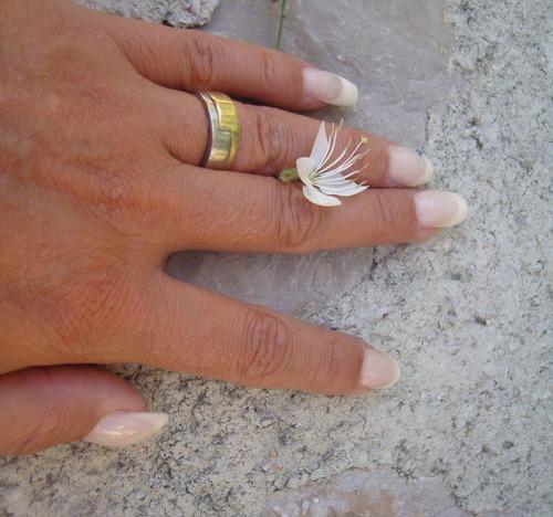 La mariée aux crevettes - 2ème partie