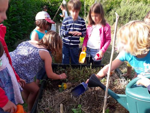 La récolte des jardiniers