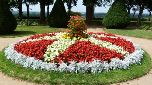 un gateau fleuri de bégonias -on admire