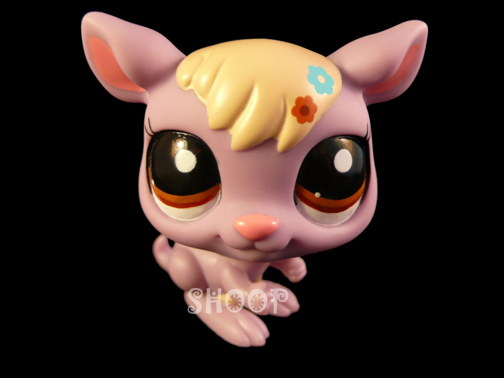 LPS 2224