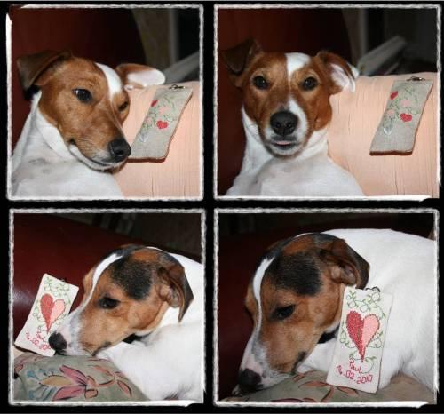 pc st valentin 26 janvier 2010 r