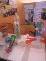Exposition des monstres des 4 classes participantes (1)