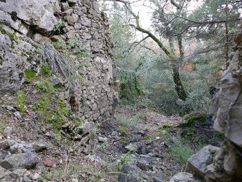 Les ruines d'un cabanon à deux étages