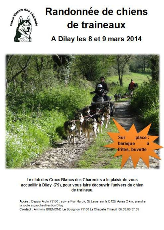 AFFICHE dILAY