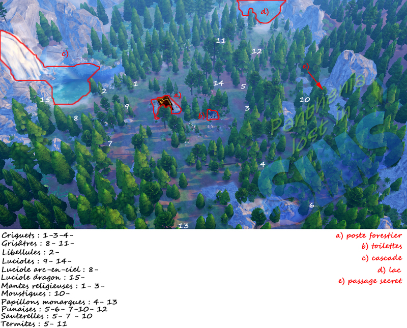 Plan Forêt