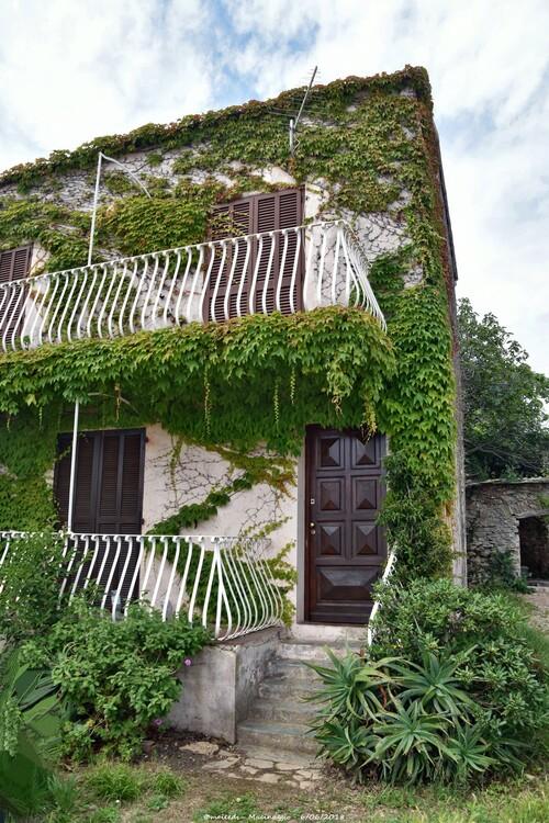 Macinaggio - Corse