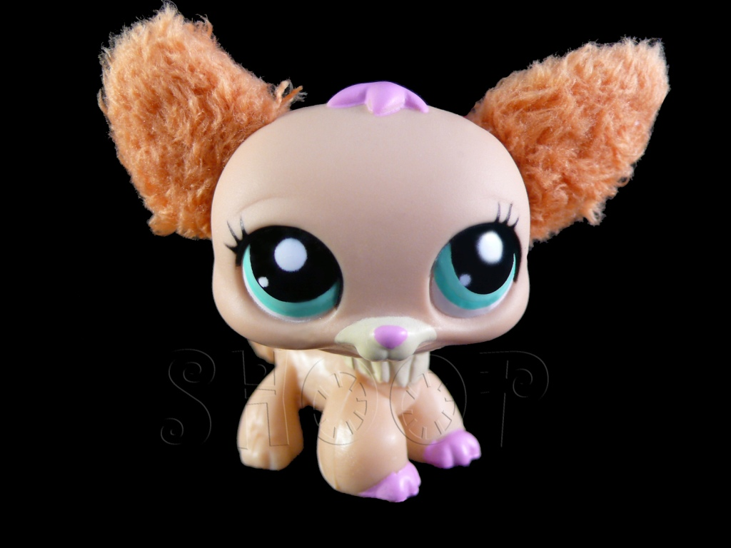 LPS 2514