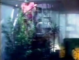Le coin vidéo dans la pièce à musique.