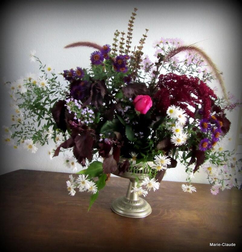 Gagnez vos entrées pour les journées de plantes de Courson à Chantilly...