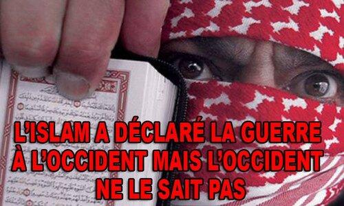 Cette France migratoire que l'on veut nous imposer...