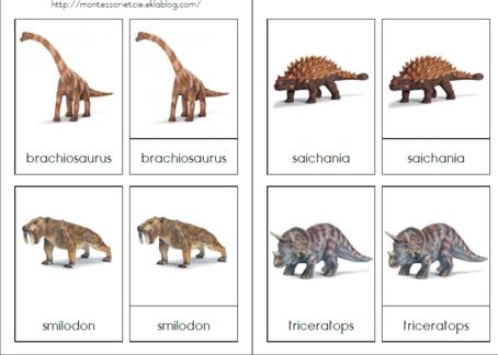 """Résultat de recherche d'images pour """"dinosaure montessori"""""""