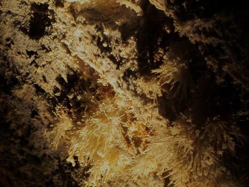Aragonite de Cabrespine