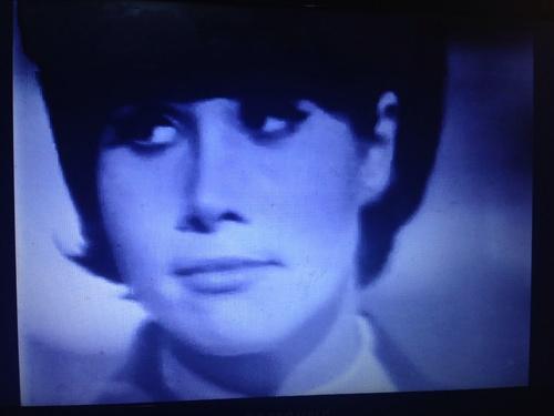 Les débuts de Michele Lee.