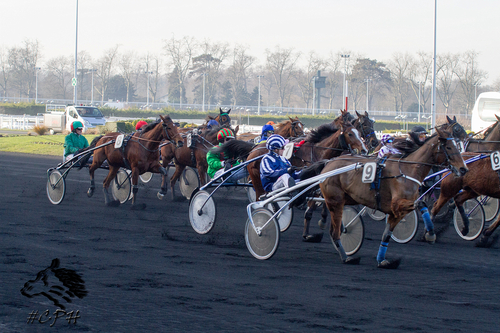 Grand Prix Ereel
