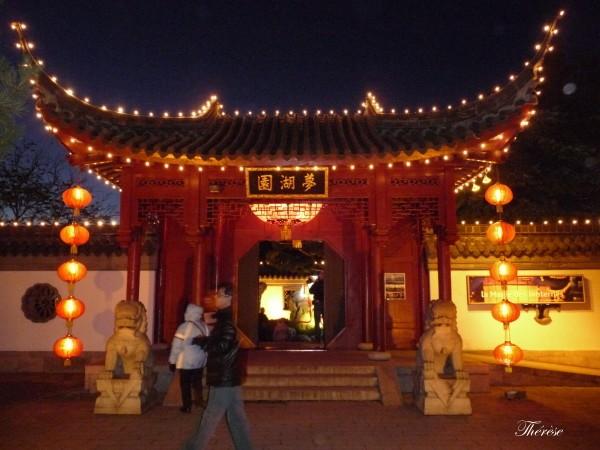 Jardin botanique chinois nuit (3)