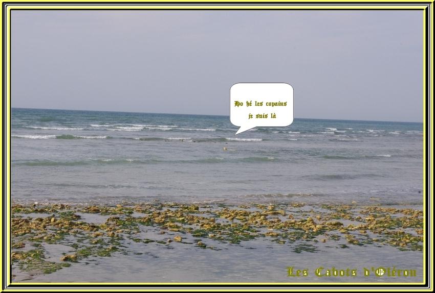 "Rando "" Amandine ""   dimanche 28 septembre 2014"