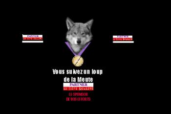 Mqt t Shirt Wolves verso