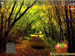 Jouer à Big Thanksgiving land escape
