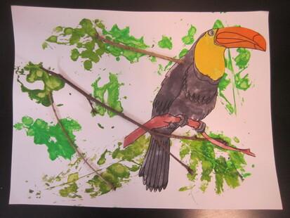 Nos oiseaux Brésiliens