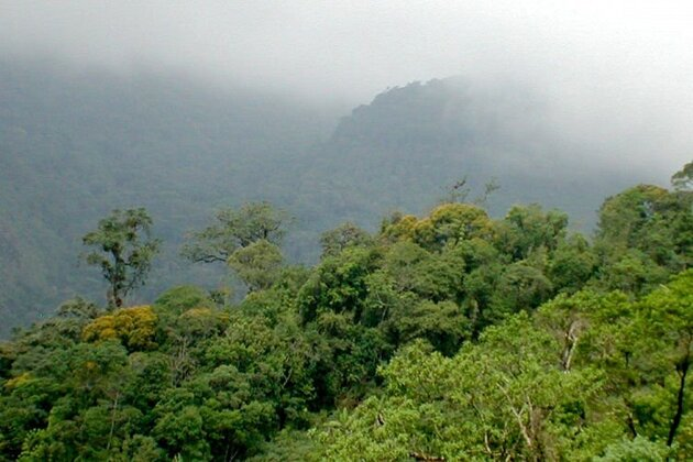 Le parc Estadual da Serra, Brésil