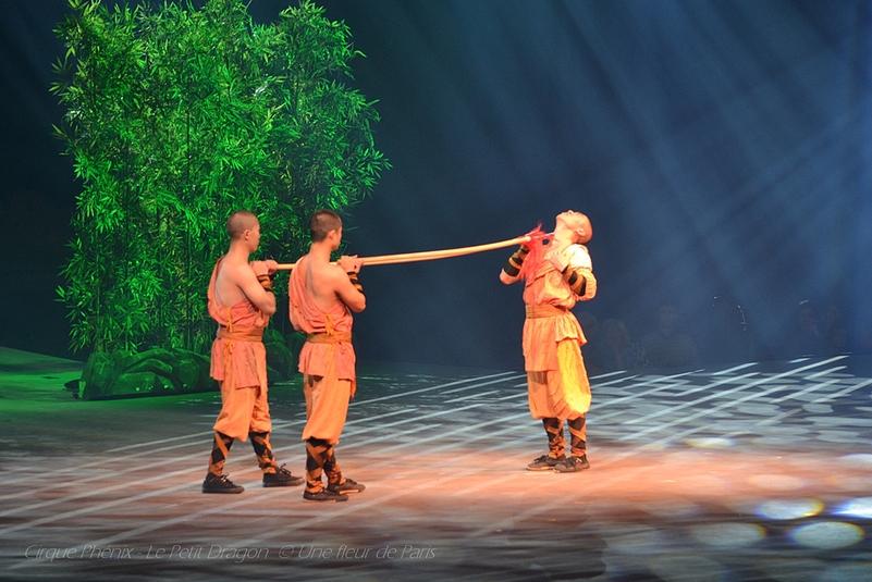 Cirque Phénix - Le Petit Dragon a grandi (3)