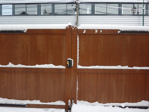 Mercredi 7 février 2018 - Jardin sous la neige