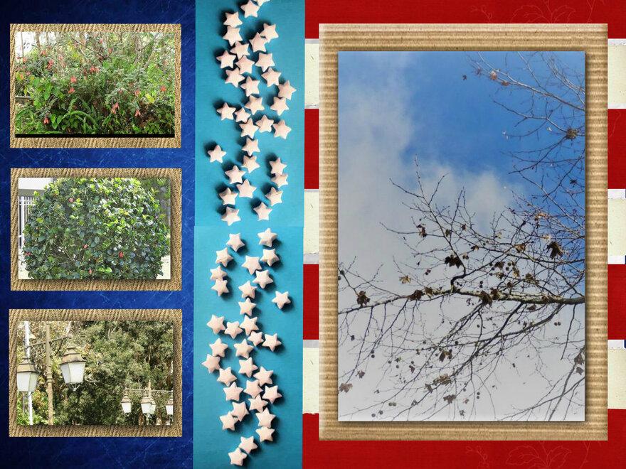 24/1/19 : Fête des Goyaviers (Plaine Palmistes) FIN