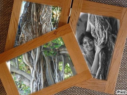 Photos de mon caillou paradis