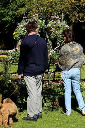 Les Jardin d'Aywiers - Automne 2015 (3/3)