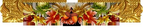 Plante d'Intérieur : SINNINGIA  (Gesnériacées)