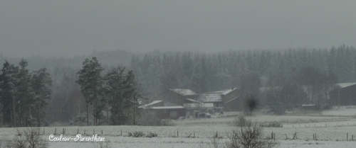 Première neige!