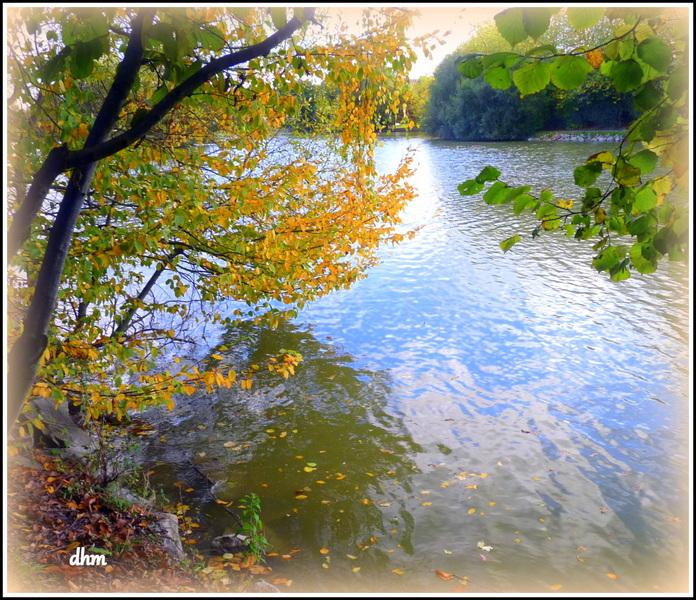 Beaux jours d'automne .