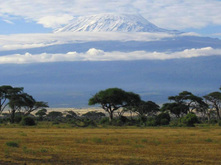 http://www.safaris-de-fred.com/images/photo-kilimandjaro-amboseli.jpg