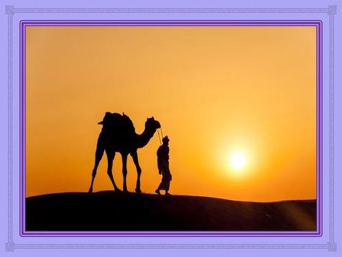 Le désert est fait pour être traversé
