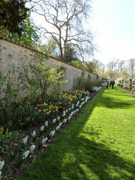 st-jean-de-beauregard---le-potager---floraisons-d-avril.jpg