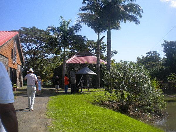 Madinina janvier 2011 725