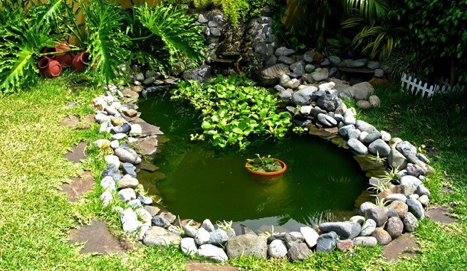 Mon petit abri de jardin for Como hacer un estanque artificial