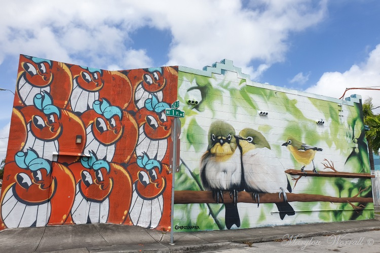 Floride : Miami Little Haïti