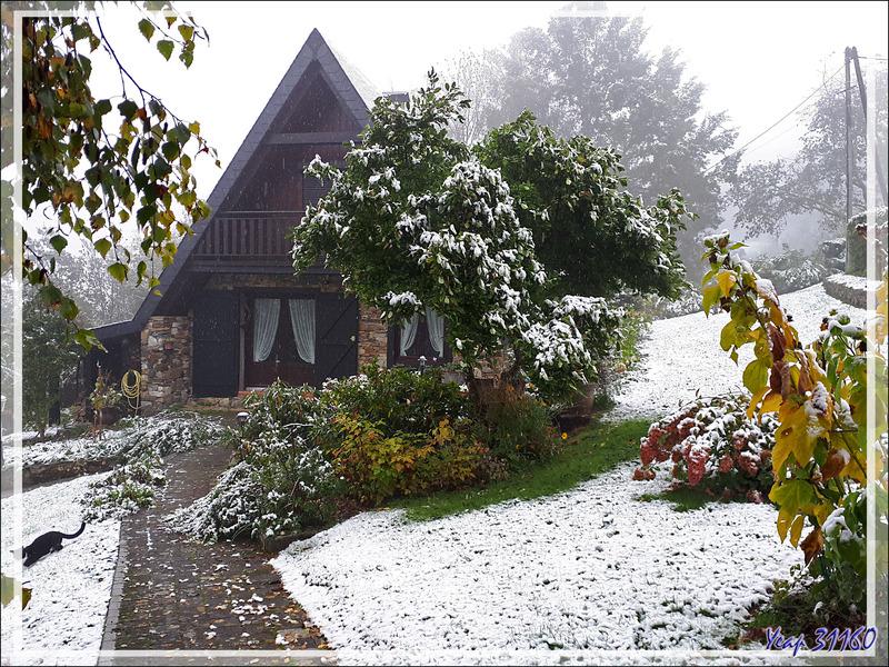 Hier l'été, aujourd'hui, l'hiver : à 600 m d'altitude, ce 28/10/2018 - Lartigau - 31160 - Milhas